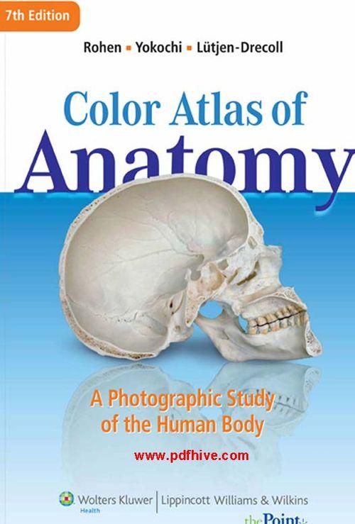 Color Atlas of anatomy a Photographic Study of the Human Body 7th Edition, anatomy human, anatomy knee, anatomy heart, anatomy of the foot, anatomy shoulder