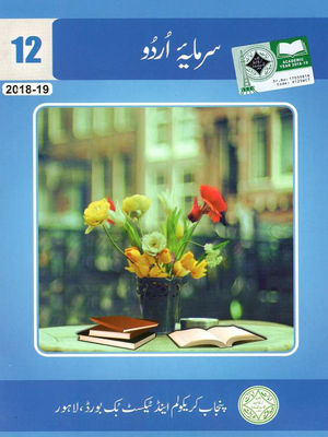 Class 12 All Punjab Textbooks Free PDF Downloads - PDF Hive