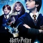 Common words:Harry Pottter, the Sorcerer's Stone by J.K Rowling, J.K Rowling'novel, Harry Potter series,