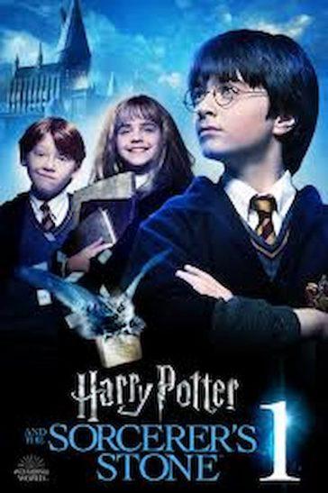 Common words:Harry Pottter, the Sorcerer's Stone by J.K Rowling, J.K Rowling'novel, Harry Potter series,