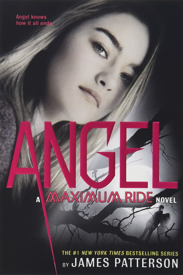 Angel Maximum Ride Book 7